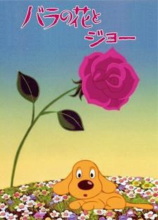 Розы и Джо